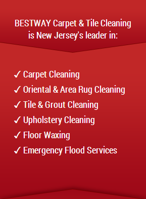 Residential Carpet Cleaning NJ